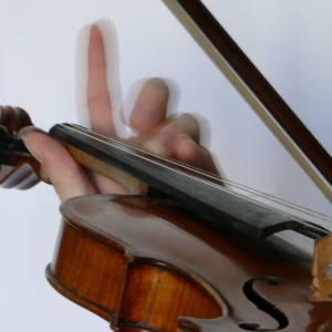 Smyčcové nástroje a harfa